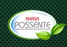 Akasa Possente Logo